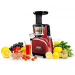 Kuvings Juicer NS-120R